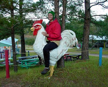 rooster12.jpg