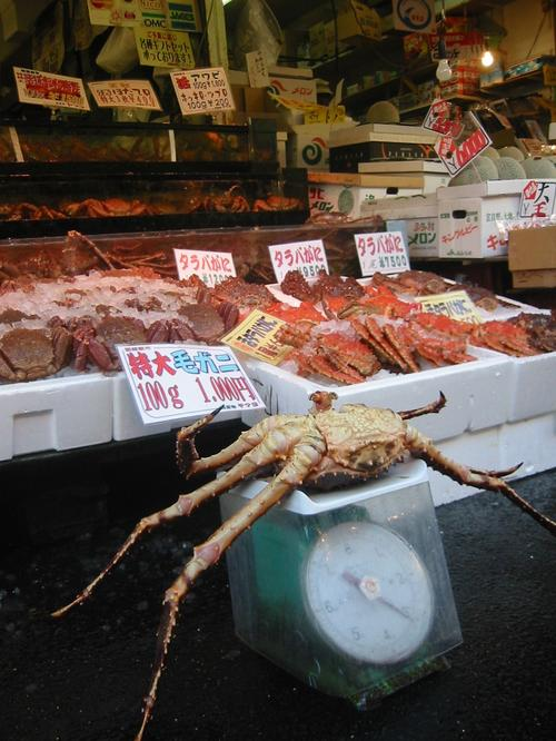 Lobster Fact Blog
