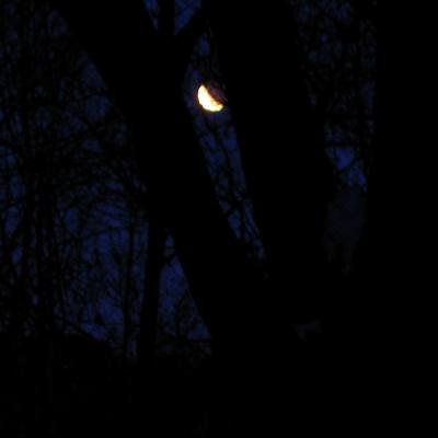 Lunar eclipse, near Wheeler, Wisconsin, March 3, 2007