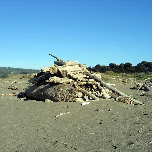 Beach near Gualala, CA, 5/6/2007