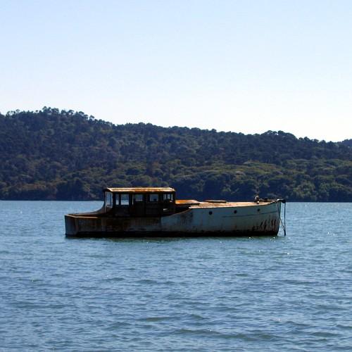 Tomales Bay, 5/7/2007
