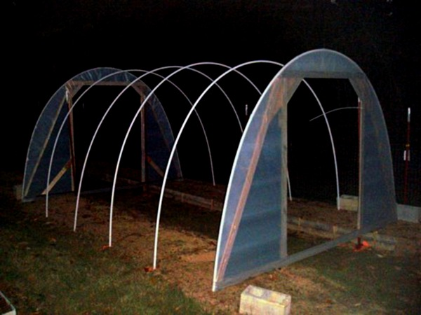 $50 hoophouse